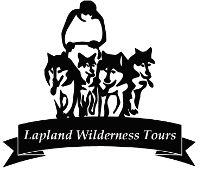 Sleddog fun in Lapland